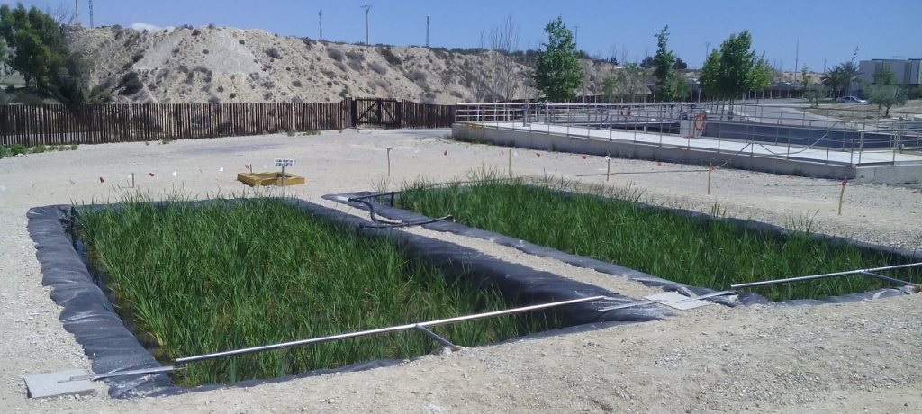 depuradora natural de aguas residuales